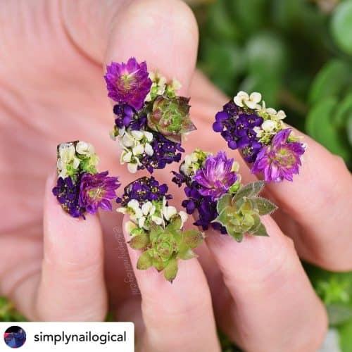 Succulent nails.