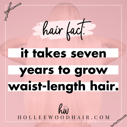 Hair fact: it takes seven years to grow waist-length hair.
